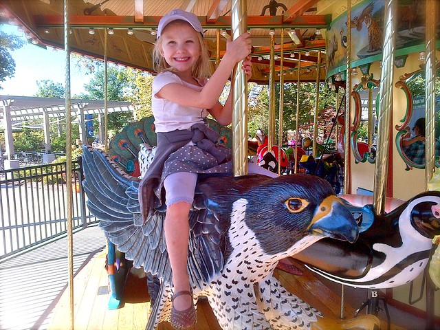 Zoey Peregrine Falcon