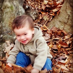 We thought about going to a playground instead of a hike...but it turns out we got the best of both worlds.  Sagan found this leaf-covered slope to be very slide-like.  :)