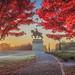 Frosty Fall Sunrise by BillikenHawkeye