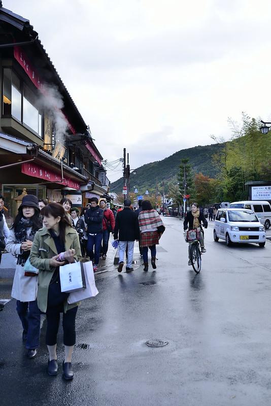 2013.11.13京都 嵐山