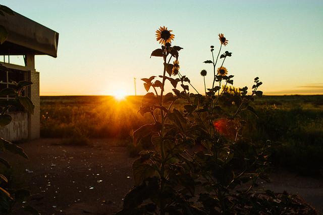 Emmanuel Rosario - Morning Sunrise in Texas