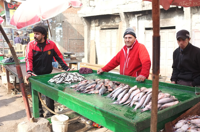 Ras El Bar market the fishermans