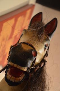50 - Equine