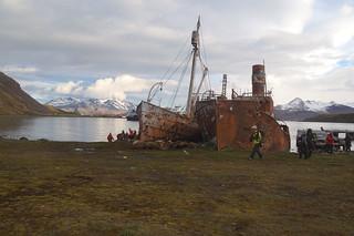 498 Grytviken