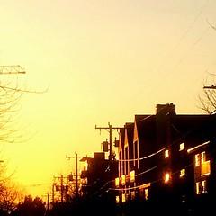 Ballard Sunset