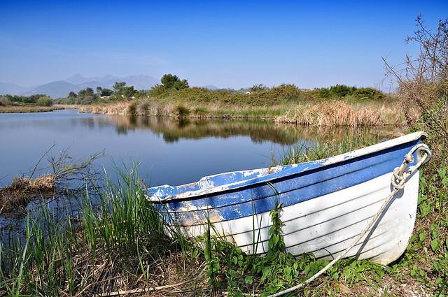 La barca nel canneto - Boat in the reeds