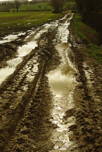 20140222-16_Lots of Mud + Puddles