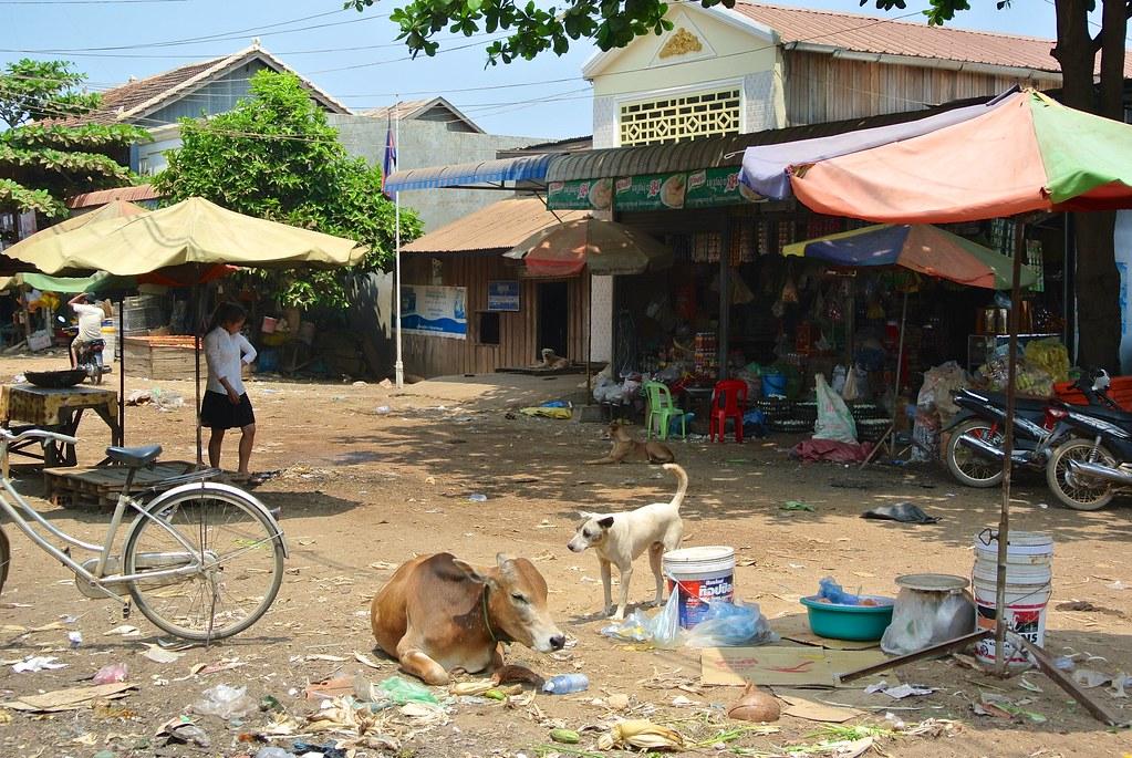 Kratie, Cambodia. 36