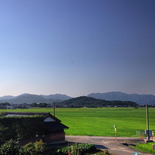 Houses and rice fields. A lot of rice fields. #exploringyamaguchi #yamaguchi #wsj2015