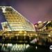SG 50 - Celebrating singapore 50th nation