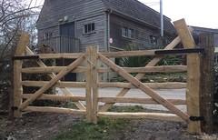 Twin chestnut Devon field gates