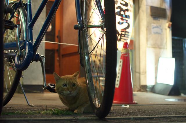 東京路地裏散歩 新宿 2013年9月6日