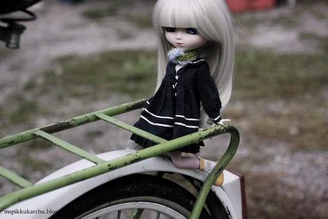 Erin - Merl