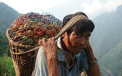 carrying-tomatoes-Kathmandu
