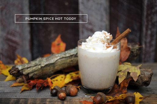 Pumpkin Spice Hot Toddy - KaelahBee.com