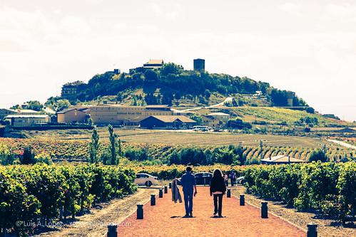 Ysios, Laguardia (Rioja)
