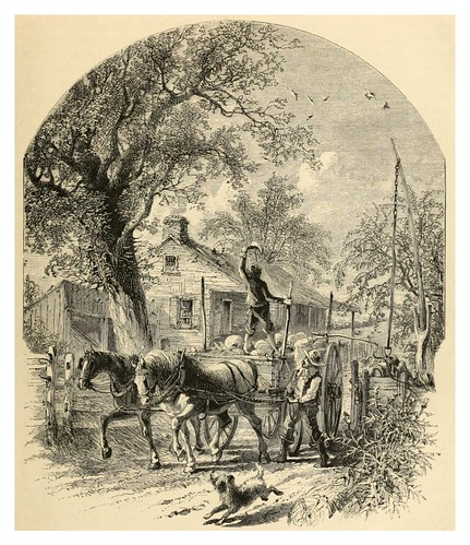 003-American pictures drawn with pen and pencil (1876)-Samuel Manning