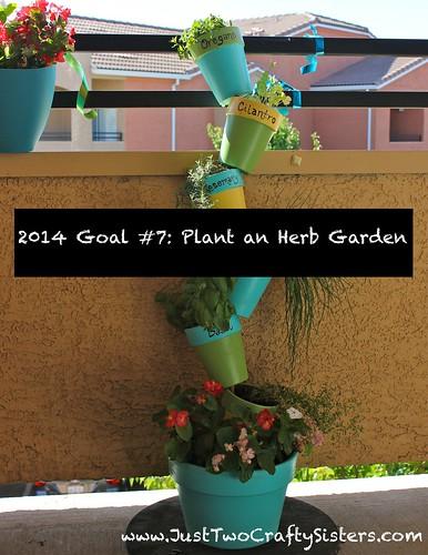 Goal #7- Plant an Herb Garden