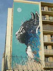 C215 : le chat de la rue Nationale (Paris 13ème)