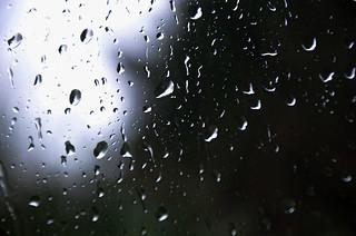 Day 391 / 03 - Rain