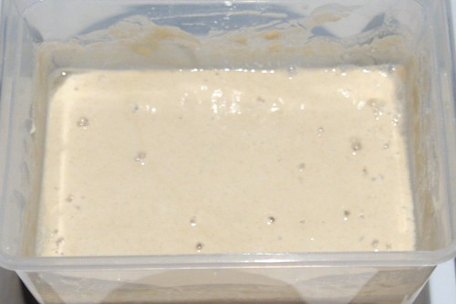 Sourdough starter reboot #2 began to look promising