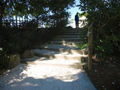 Saturday Stairs