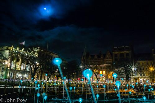 City Lights By Moonlight