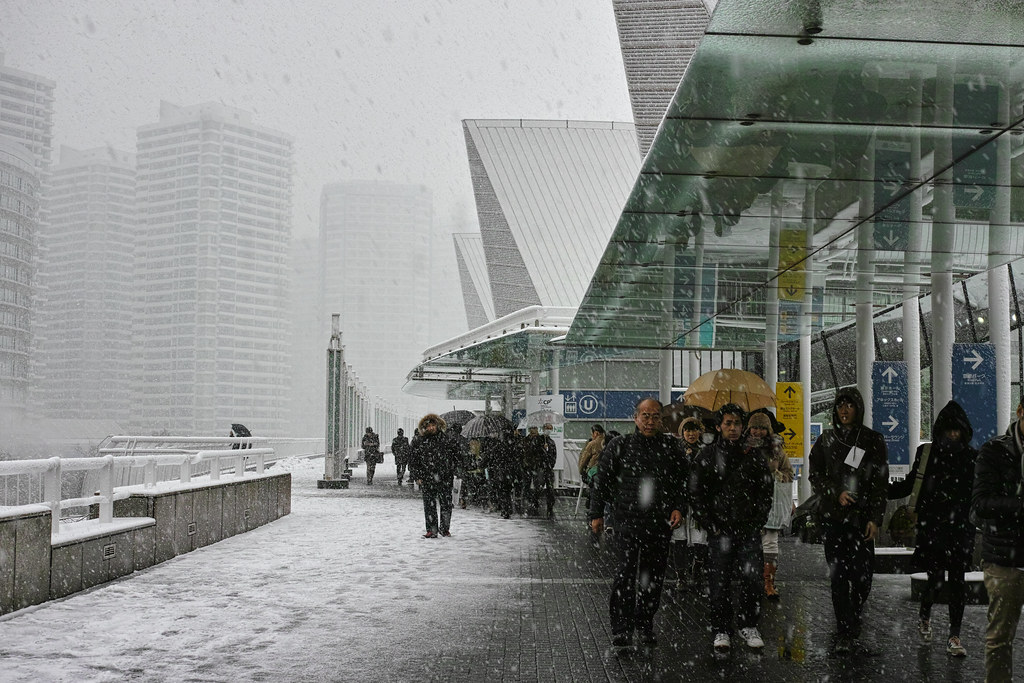 Heavy Snow Yokohama - 2013.02.14 - DP2M