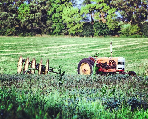 Rosary Old Tractor #kimberlyreneephotography #rusty #old #tractor #field #summer #summertime #rustytractor #oldtractor #rustyoldtractor #sharon #wisconsin #sharonwisconsin #summerday #wildflowers