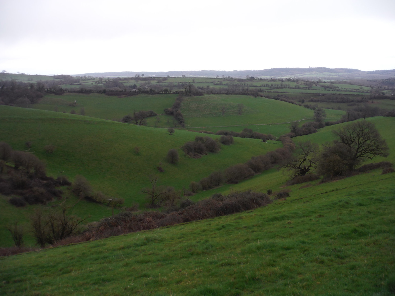 Green's Combe SWC Walk 284 Bruton Circular (via Hauser & Wirth Somerset) or from Castle Cary