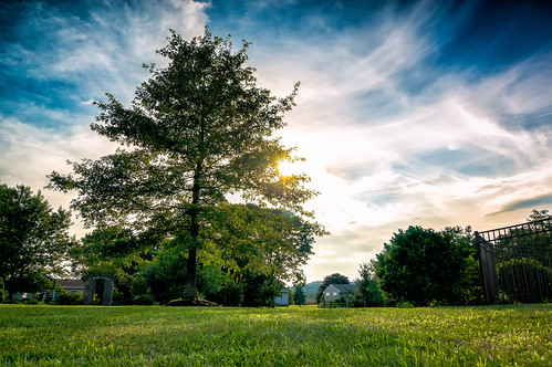 trees summer sky clouds evening newjersey backyard unitedstates sony farmland pennington nex 2013 5r 1650mm dvcphoto92