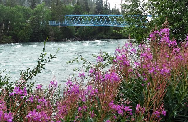 yukon-river-bridge