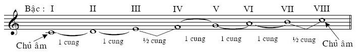 am giai C