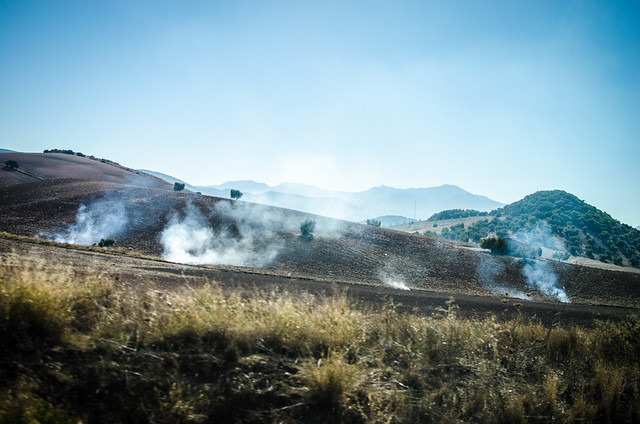 Brush fires along the Andalusian countryside, between Sevilla and Ronda.