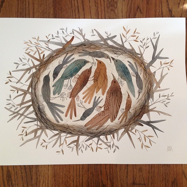 nesting #watercolor #gollybard