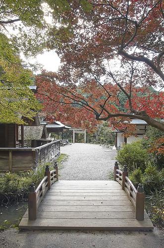 【写真】2013 紅葉 : 日向大神宮/2020-10-05/IMGP3376