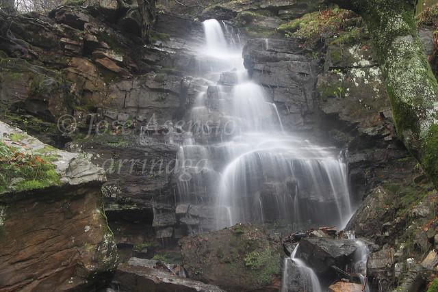 Parque Natural de Gorbeia/Gorbea #DePaseoConLarri #Photography 2202