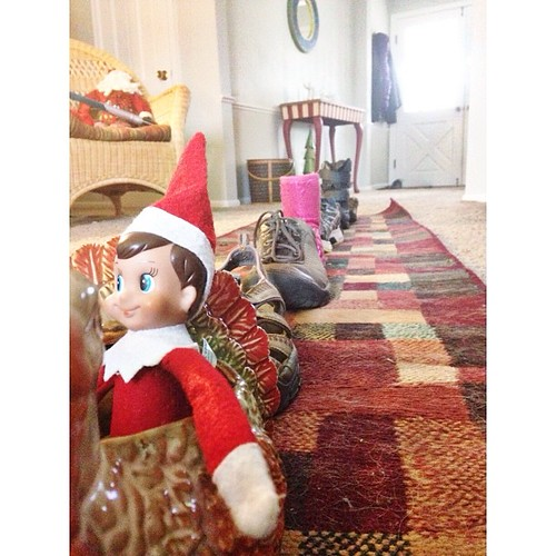 Snowball leading the shoe train in a turkey! #elfontheshelf #bostineloschristmas2013