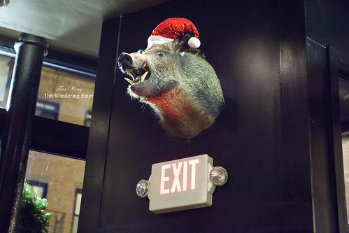Hog head taxidermy from North Carolina...with a Christmas hat