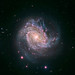 spiral galaxy M83 by NASA Goddard Photo and Video