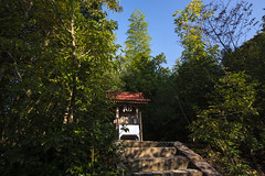 aekuni_shrine-22
