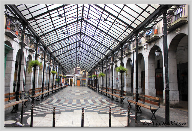 5 Tolosa