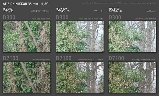 Nikon comparison D300 vs D7100