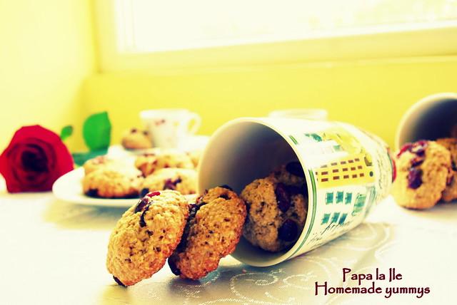 Biscuiți de ovaz cu merișoare... poze (6)