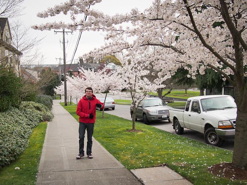 Seattle spring