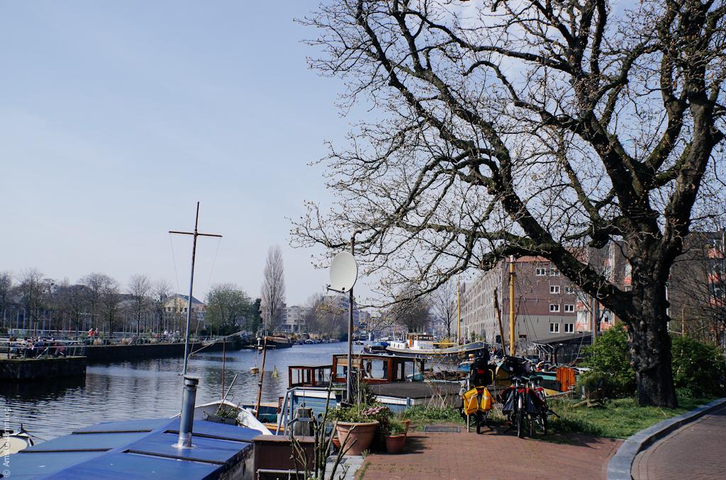 Spring in Amsterdam