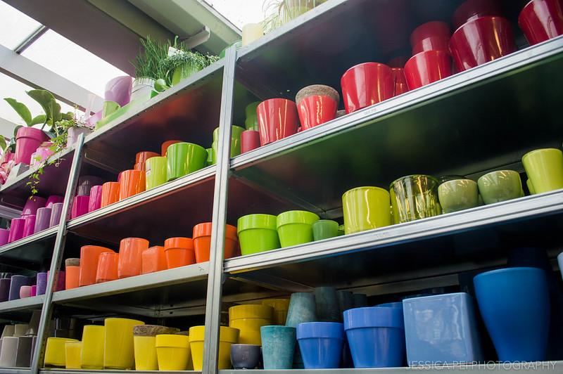 Amsterdam Bloemenmarkt Flower Market Pots