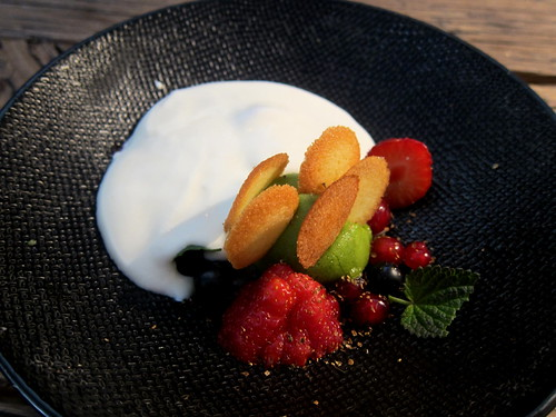 Berries, Sorrel Sorbert, Langues de Chat, Custard