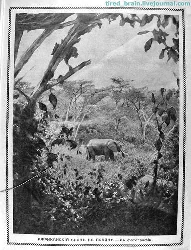 Природа и Люди 1914 (03)_09