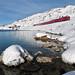 Trenino Rosso - Ospizio Bernina - Grigioni - Svizzera by Felina Photography